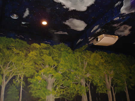 Night sky/trees . Drive in theatre themed screening room.